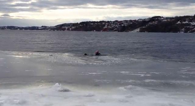ANIMALES - Página 2 Hombre-rescata-a-su-perro-en-lago-helado-noruega