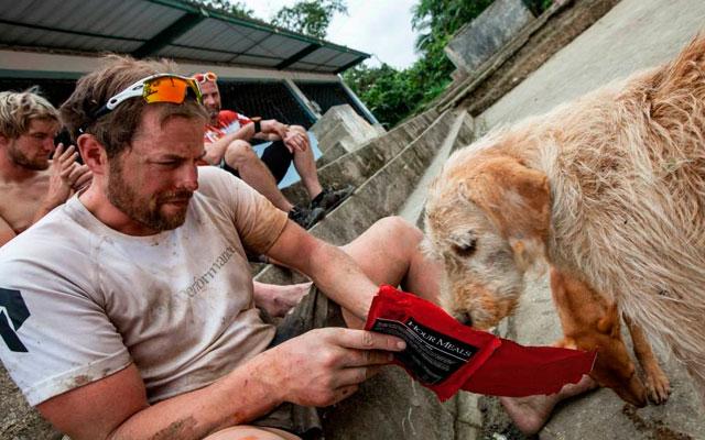 ANIMALES - Página 3 Hombre-ayuda-perro-callejero-maraton-ecuador