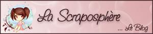 Copi'page double fevrier 2010 - Page 3 SCRAPOblog300