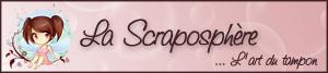 Copi'page double fevrier 2010 - Page 3 SCRAPOtampon300