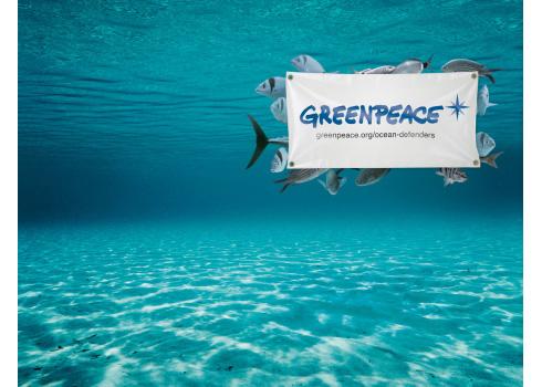 Arrêtons de mettre nos oceans en faillite Greenpeace_ocean_defenders