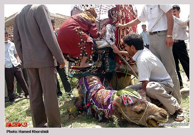 عروسی سنتی تركمن ها به روایت تصویر L00906394144