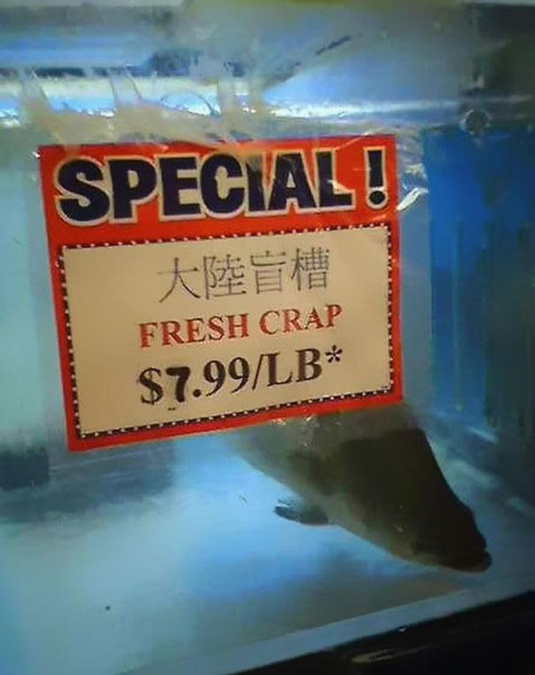 40 Most Bloodcurdling Chinese Mistranslations Ever! Warning: You Will Laugh To Death! Funny-Chinese-Mistranslation-16