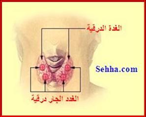 أمراض الغدد الصم Endocrine disorders Hypoparathyroidism1