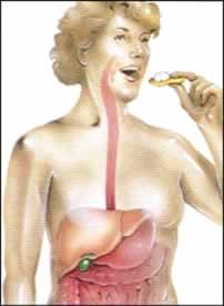 أمراض والتهابات المرارة Gall bladder  Gall_bladder