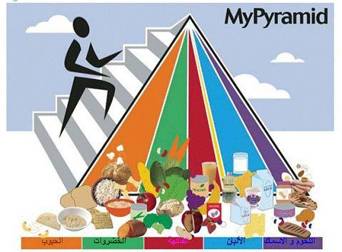 هرم الطعام FoodPyramid2