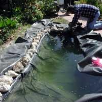 Строительство пруда на своем участке. Декоративный водоем. 6046s