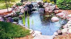 Строительство пруда на своем участке. Декоративный водоем. Vodsad2