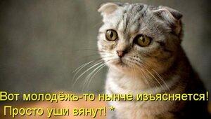 Неправильные медицинские запросы ))) F_4a6ca9cfe37bf1