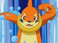 [Arhiva] Pokemonii Antrenorilor 502