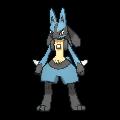 NEW Pokemon Thread - Page 10 448