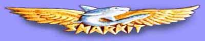sponsors du concours NAVAL 2016... Logo