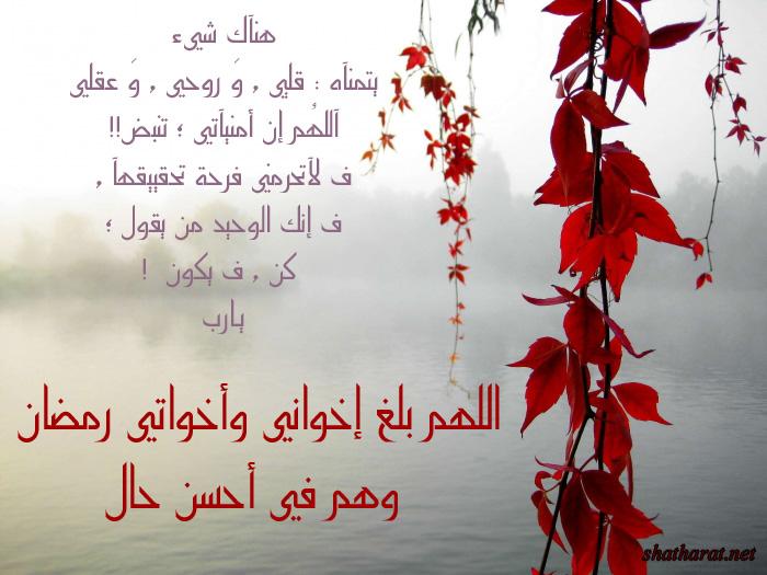 رســالة لمن تُـحِب تكره... لمن تـــــــريد....! - صفحة 5 6rm1434
