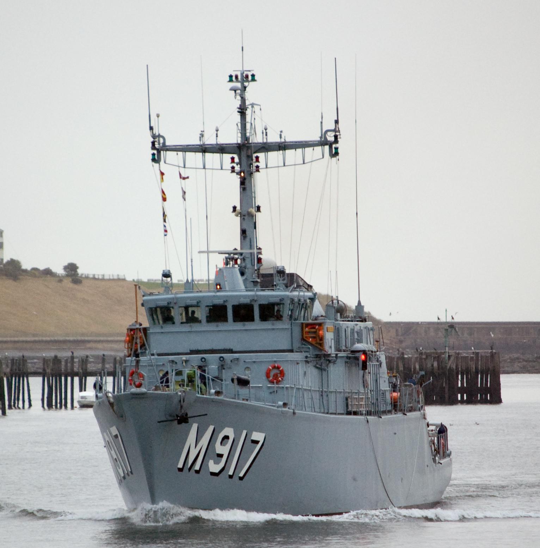 M917 Crocus 995430