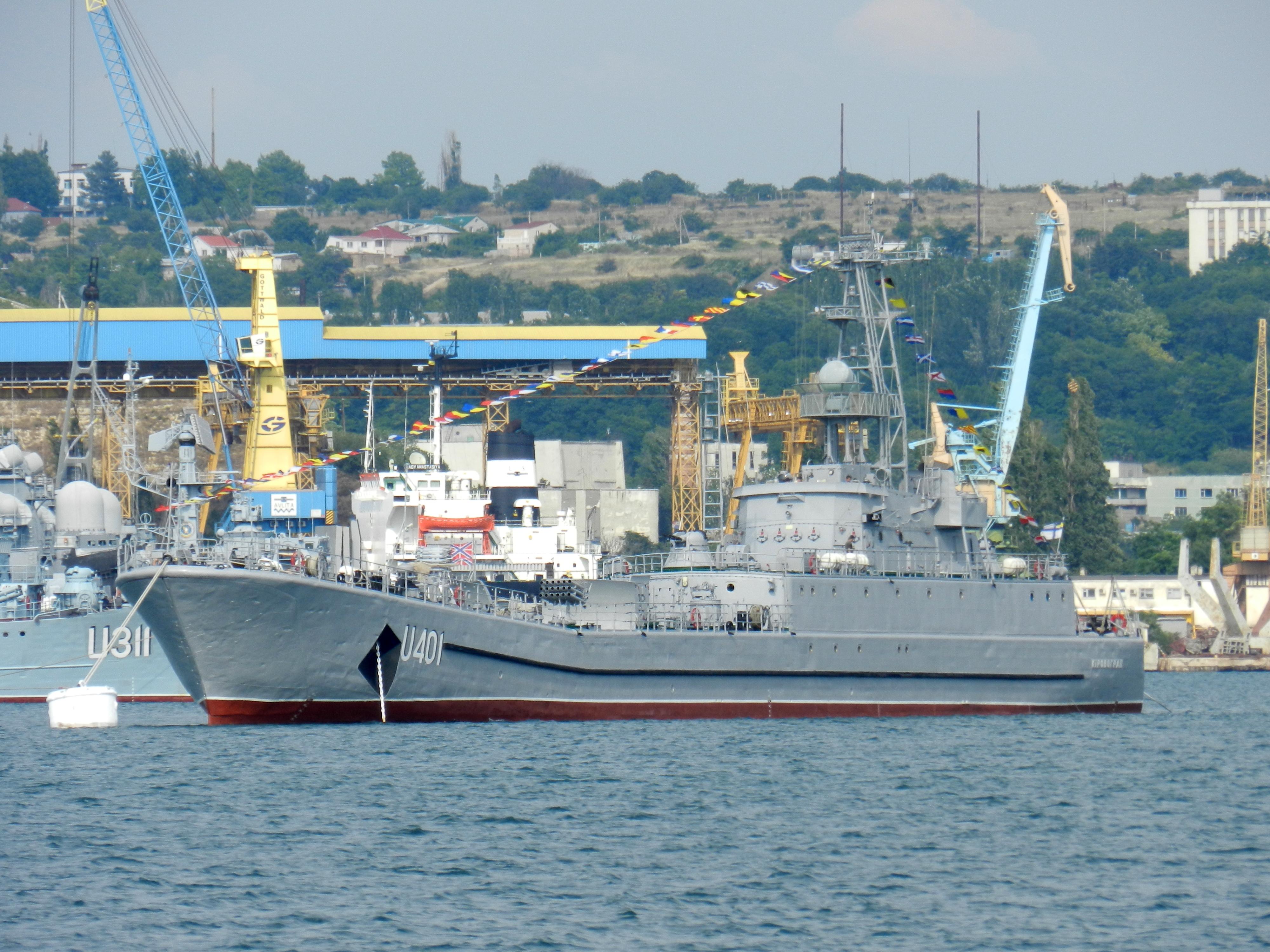 Ukrainian Armed Forces / Zbroyni Syly Ukrayiny - Page 2 1345655
