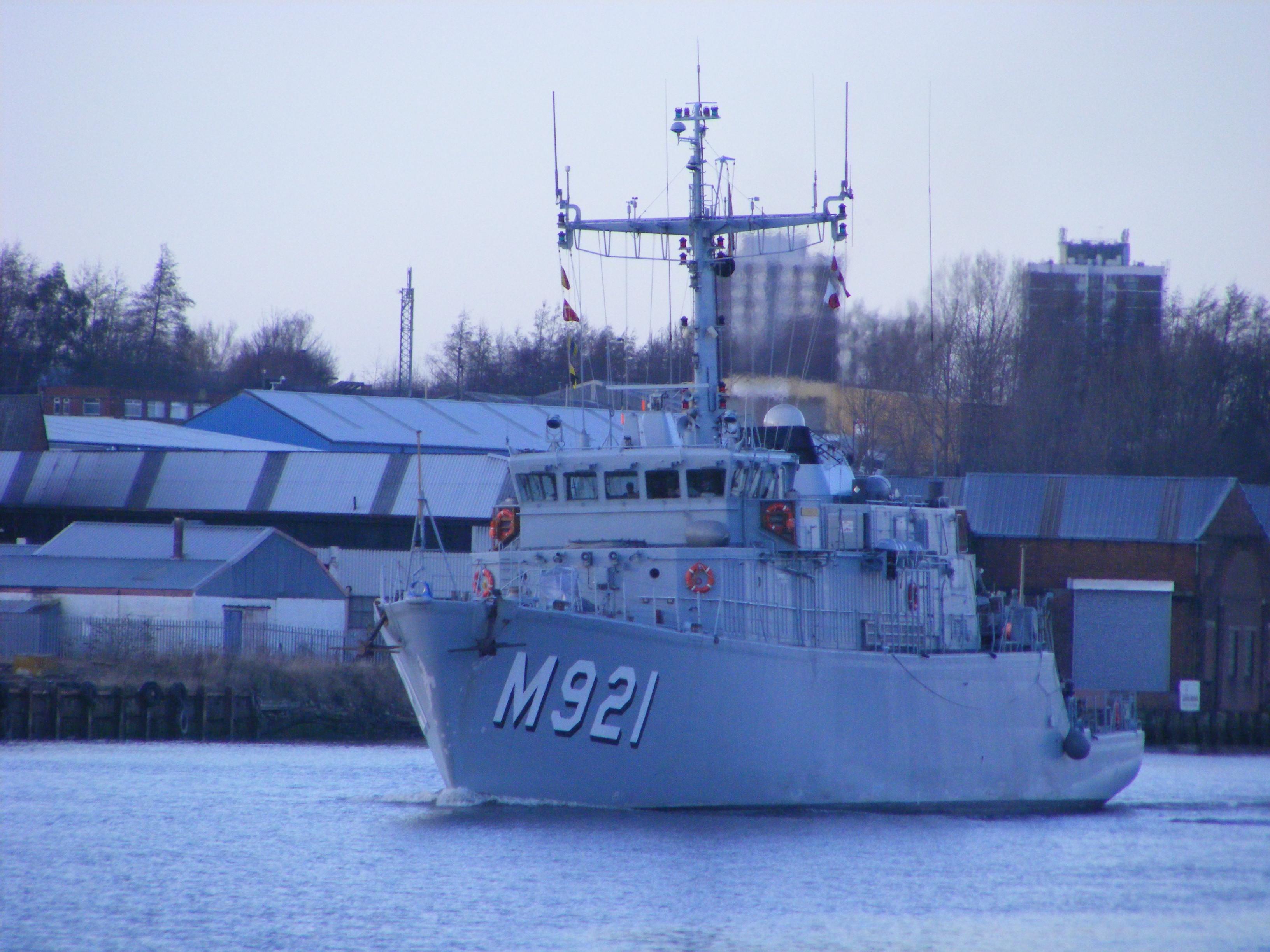 London - M921 Lobelia 835908