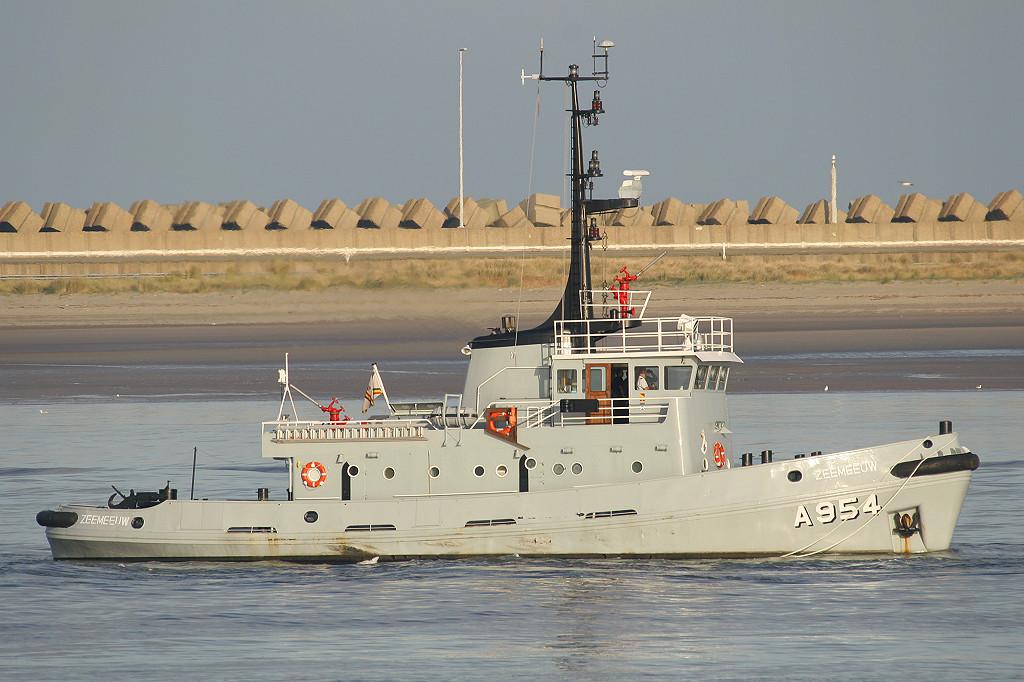 A954 Zeemeeuw 150918