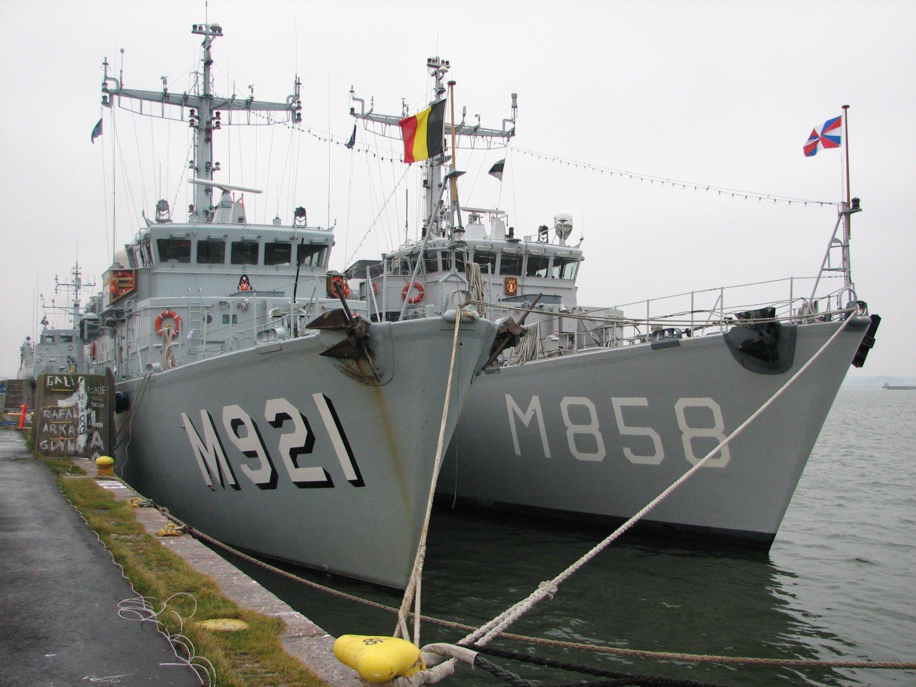 M921 Lobelia 136349