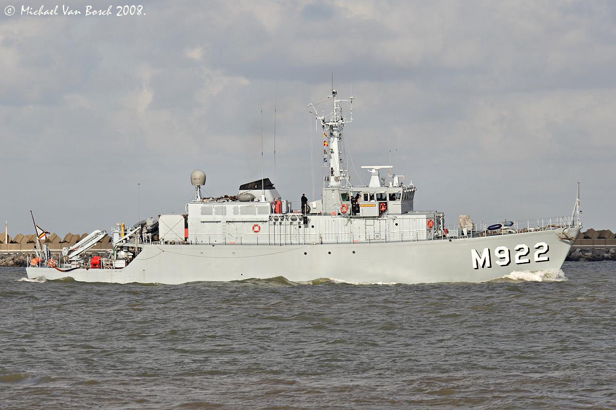 M922 Myosotis 751259