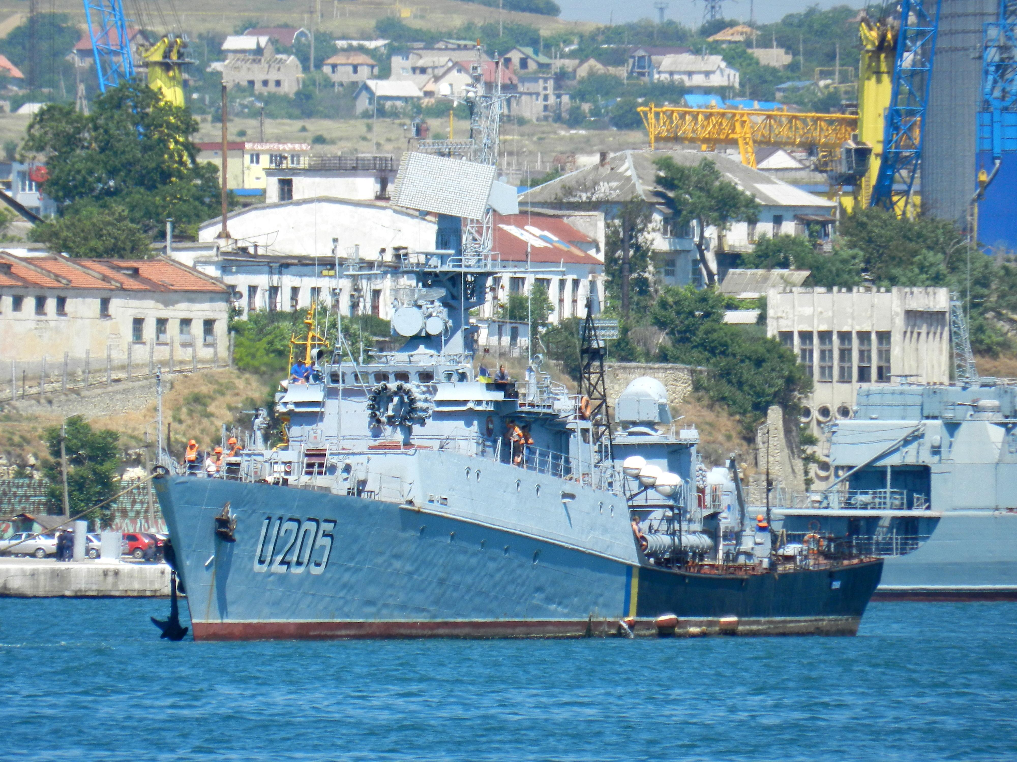 Ukrainian Armed Forces / Zbroyni Syly Ukrayiny - Page 2 1329289