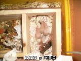 7 zlatih hrčkov S6303868