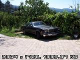 hello from slovenia, europe 1003463