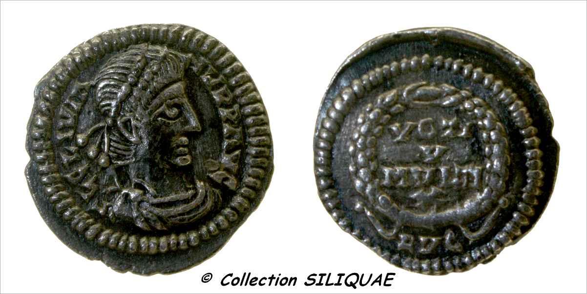 Les siliques de Siliquae 01864