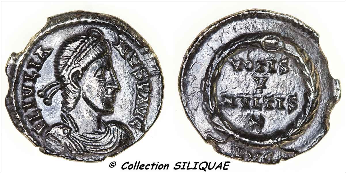 Les siliques de Siliquae 01921