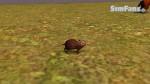 The Sims 3 Pets - Fotos de alguns animais 071-150x84