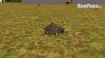 The Sims 3 Pets - Fotos de alguns animais 072-150x84