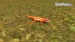 The Sims 3 Pets - Fotos de alguns animais 074-150x84