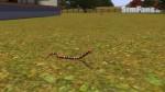 The Sims 3 Pets - Fotos de alguns animais 077-150x84