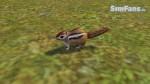 The Sims 3 Pets - Fotos de alguns animais 080-150x84