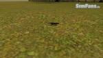 The Sims 3 Pets - Fotos de alguns animais 081-150x84