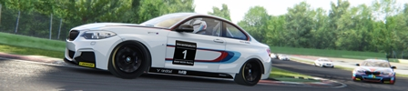 Assetto Corsa Series de Enero 2018 BMW235iEuro