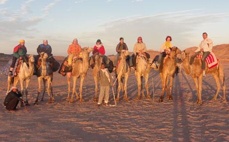 Mein Leben und ich ...  > SINAI < Gruppenbild-mit-Kamel
