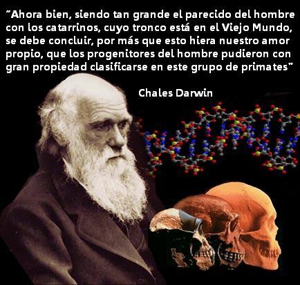 Dios y la Ciencia ¿Quién tiene la Razón? Creacionismo vs. Evolucionismo - Página 3 Mirarunmono05