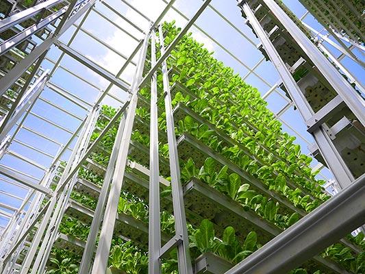 Projet d'ingénierie de production de ressources pour une colonie Martienne Skygreens-Vertical-Farm1