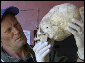 Evidence Elongated Skulls Not Human Foersterskull1