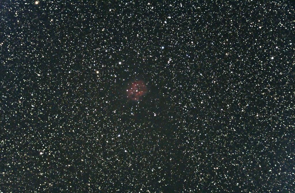 IC 5146 - The Cocoon Nebula - 29 Dec 2008 IC5146-Coccoon-Nebula-29dec2008