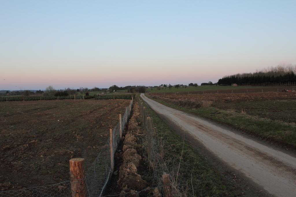 Encore des photos du site de Morville Morville_0105