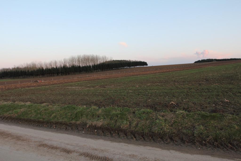 Encore des photos du site de Morville Morville_0106