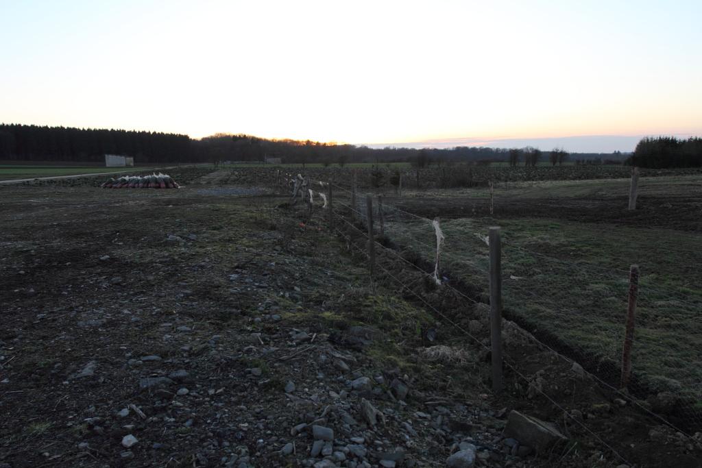 Encore des photos du site de Morville Morville_0109