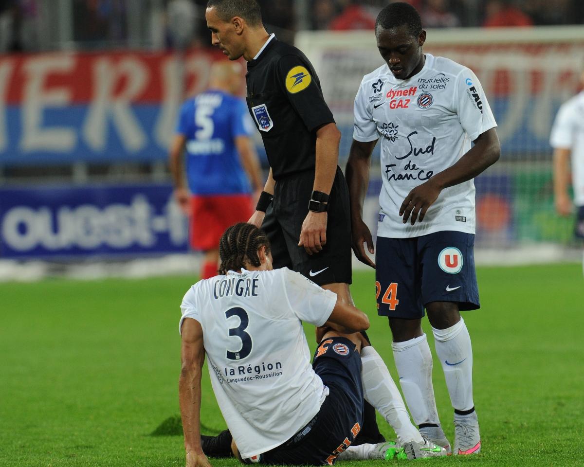 [32e journée de L1] SM Caen 0-2 Montpellier HSC Congre_a_terre_2