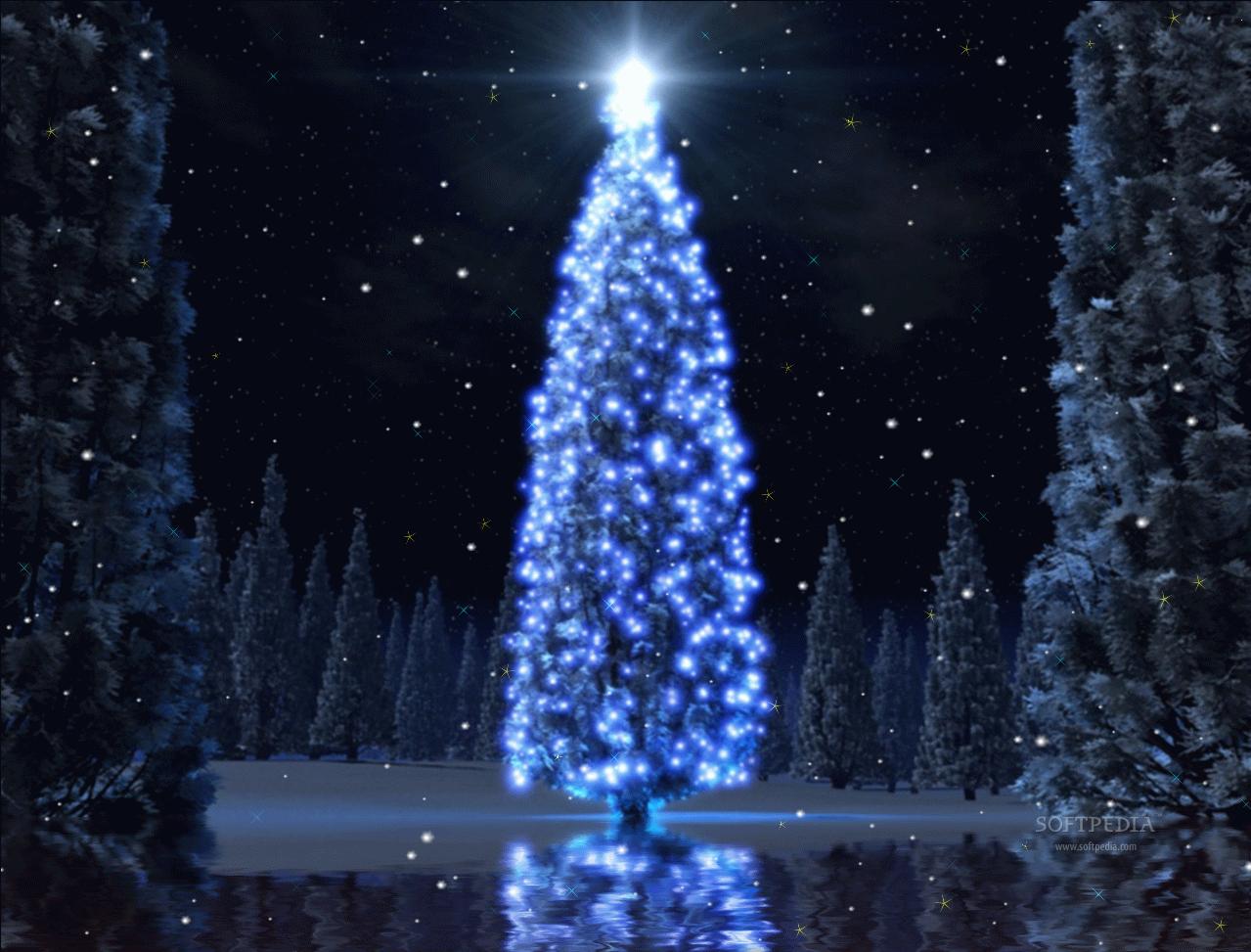 مظاهر الاحتفال بالكريسماس فى استراليا: مهداه من صديقنا جمال جرجس Christmas-Tree-Animated-Wallpaper_1