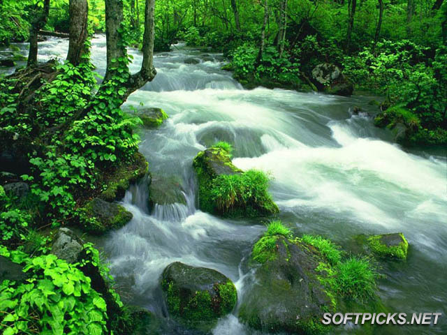 Foto te bukura nga Natyra - Faqe 2 Free-Wonderful-Nature-Screensaver