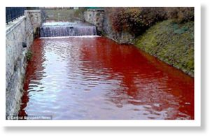 The river of blood: Slovakian waterway turns red overnight  Article_2517516_19CE2481000005