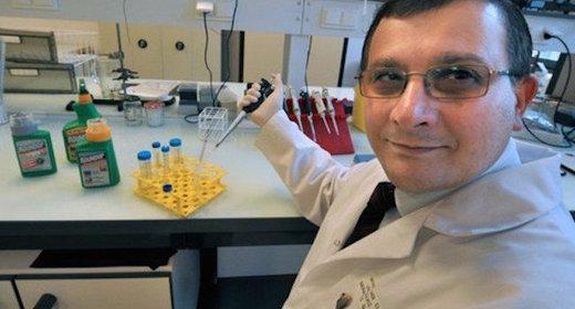 Genetically Modified Organisms (GMO) Scientist_linked_GMO_tumors_wi