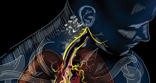Waking the Vagus: Wandering nerve could lead to range of therapies 112815_vagus_opener_free