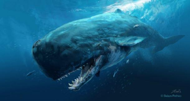 20 espèces animales exceptionnelles et terrifiantes qui sont éteintes aujourd'hui. Creatures-effrayantes-%C3%A9teintes-11